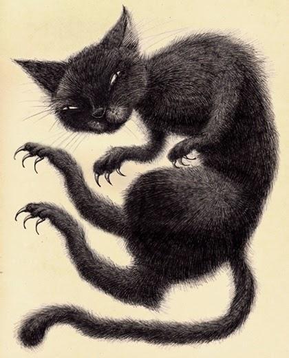 gato negro 1